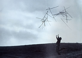 andy goldsworthy tossing sticks