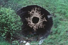 andy,goldsworthy