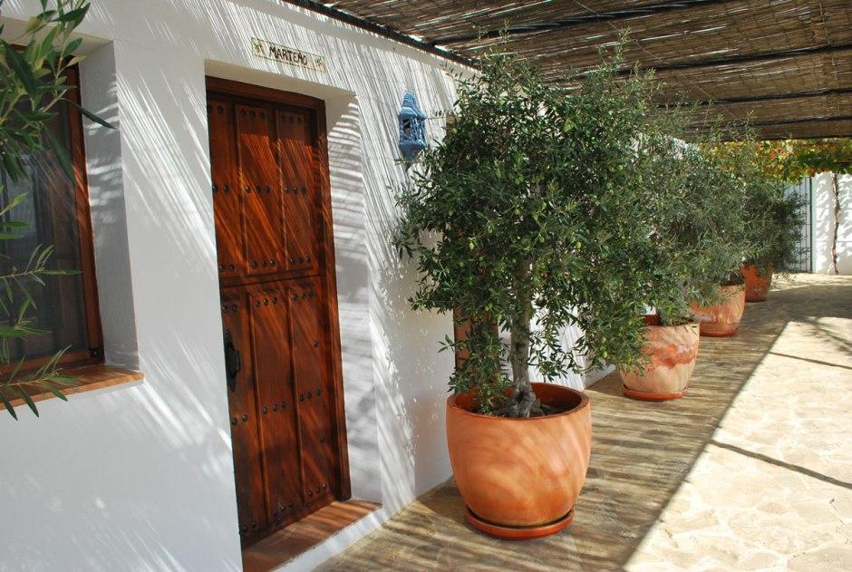 de kamers, allemaal genoemd naar een olijfsoort