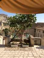 matera_breakfastcorte