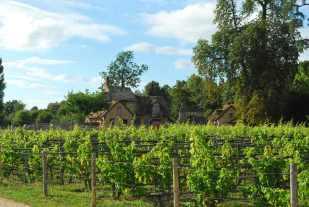 Versailles_hameaudelareine094