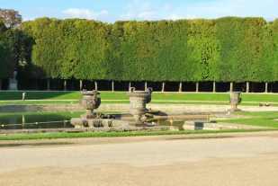 Versailles_jardins_arbres151