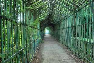 Versailles_trianons113