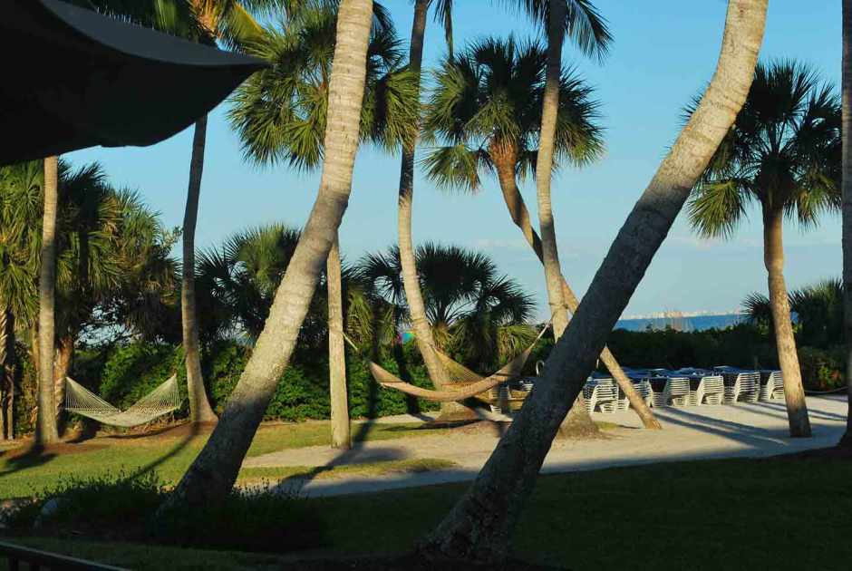 Florida Gulfcoast