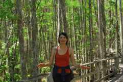 Florida Corkscrew Swamp